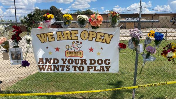 Dog Memorial